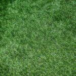 Berkshire Turf & Artificial Grass Companies