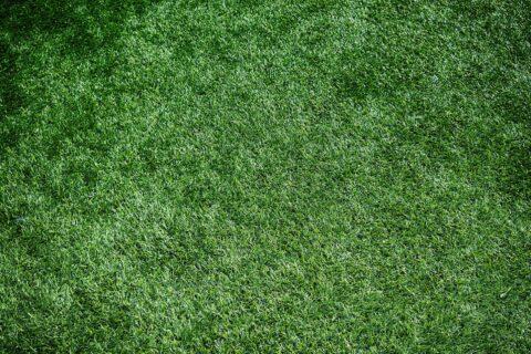 Artificial <b>Grass</b> Installation